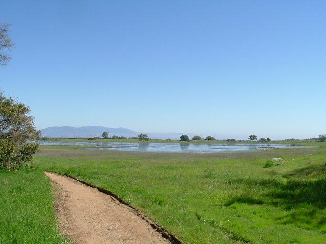 Santa Rosa Plateau Ecological Reserve: March, 2005 - Lake