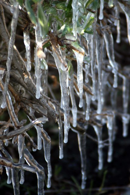 Record Cold: January 14, 2007