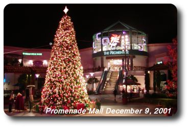 Season's Greetings in Temecula